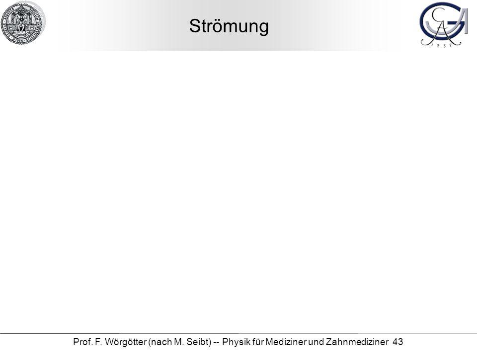 Strömung Prof. F. Wörgötter (nach M. Seibt) -- Physik für Mediziner und Zahnmediziner 43