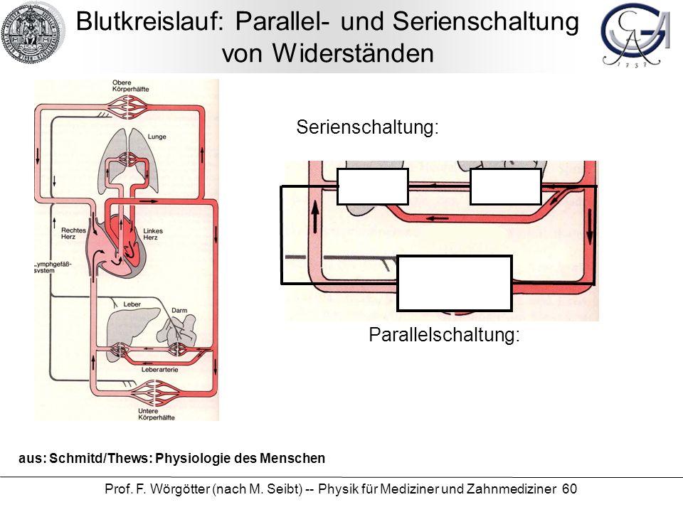Blutkreislauf: Parallel- und Serienschaltung von Widerständen