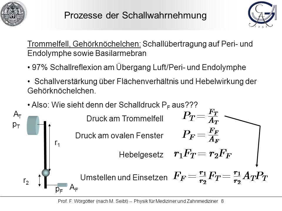 Prozesse der Schallwahrnehmung