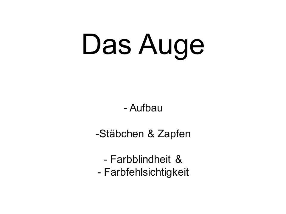Aufbau Stäbchen & Zapfen Farbblindheit & Farbfehlsichtigkeit