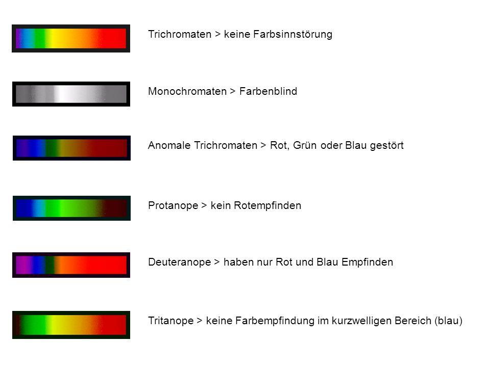 Trichromaten > keine Farbsinnstörung