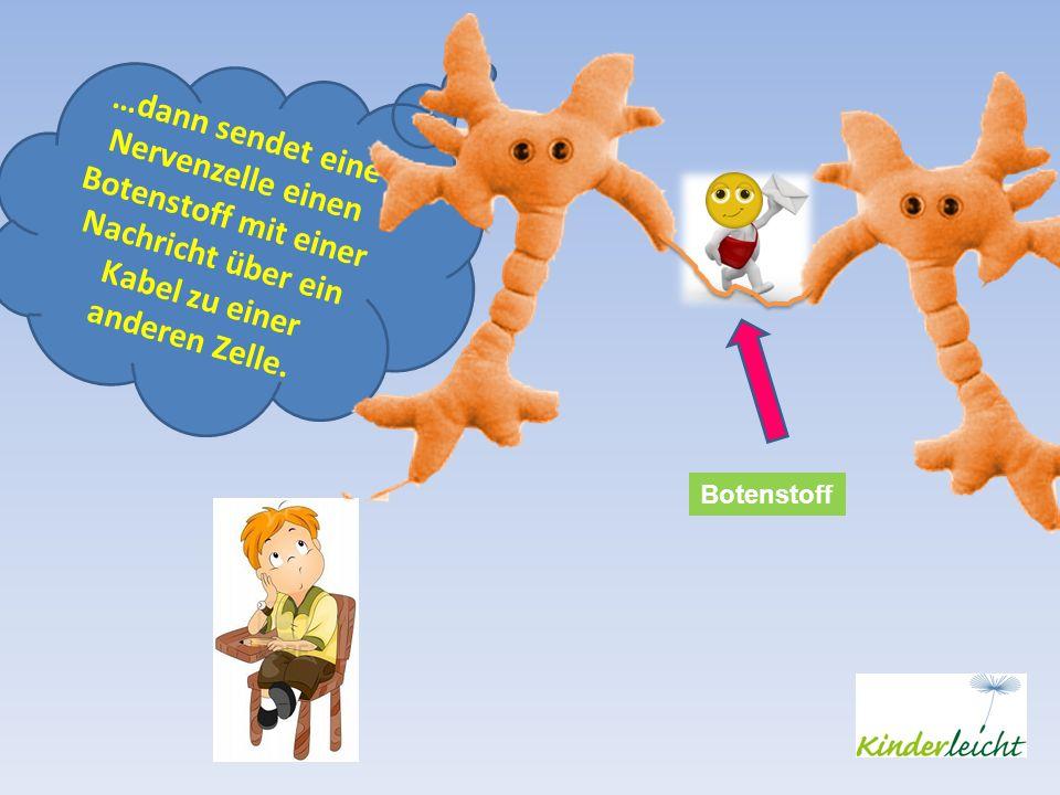 …dann sendet eine Nervenzelle einen Botenstoff mit einer Nachricht über ein Kabel zu einer anderen Zelle.
