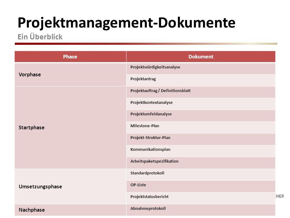 Projektmanagement-Dokumente Ein Überblick