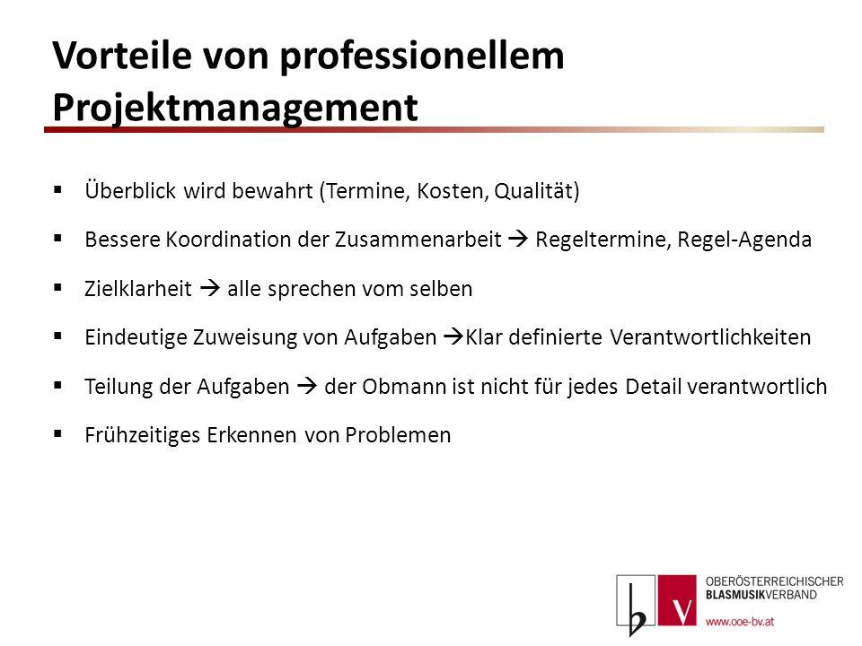 Vorteile von professionellem Projektmanagement