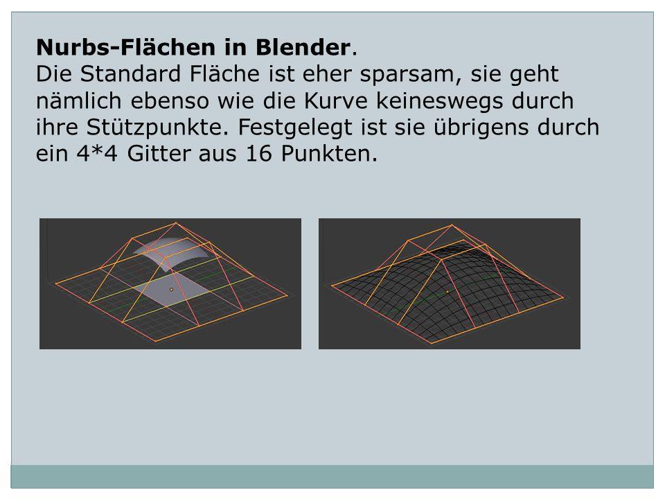 Nurbs-Flächen in Blender.
