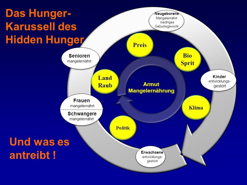 Das Hunger- Karussell des Hidden Hunger