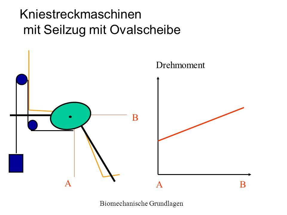 Biomechanische Grundlagen