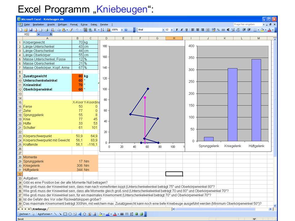 """Excel Programm """"Kniebeugen :"""