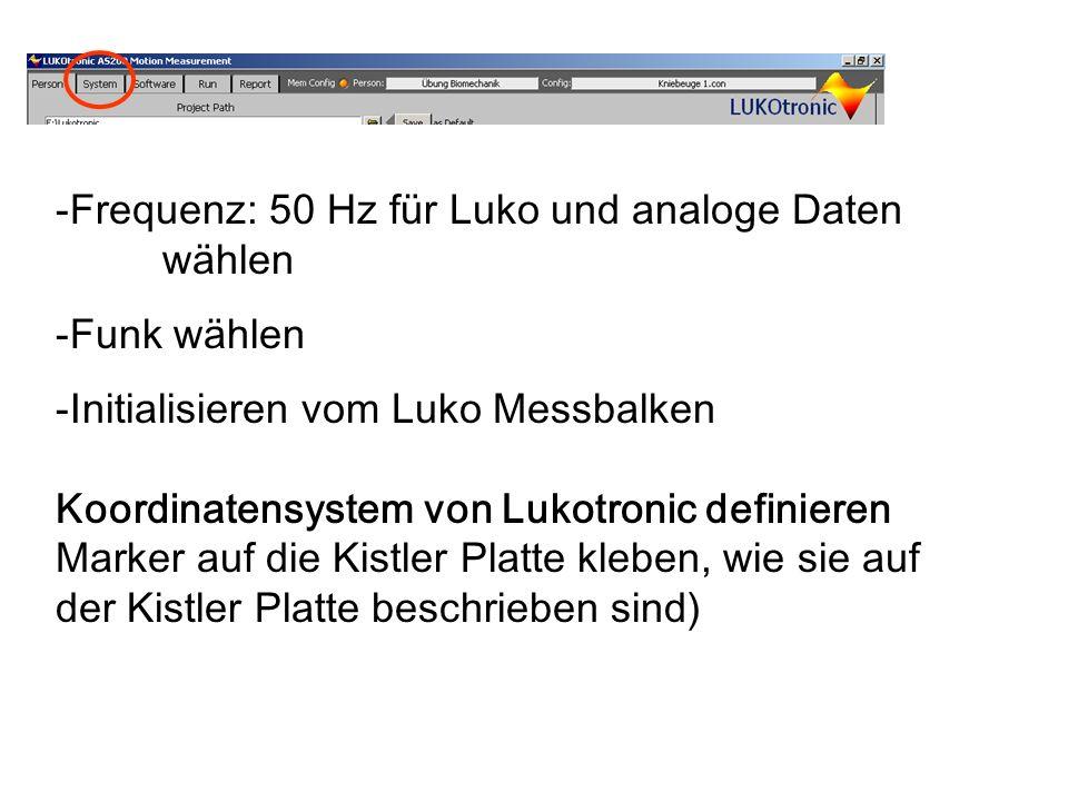 Frequenz: 50 Hz für Luko und analoge Daten wählen