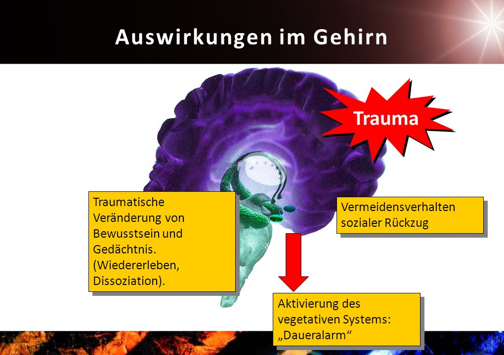 Auswirkungen im Gehirn