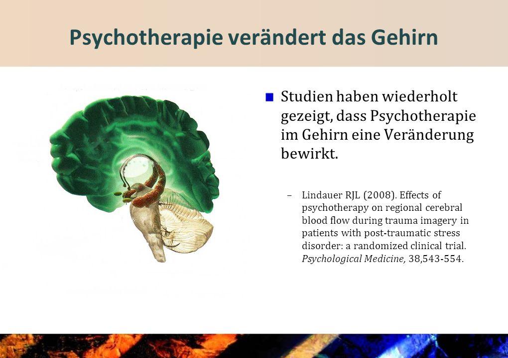 Psychotherapie verändert das Gehirn