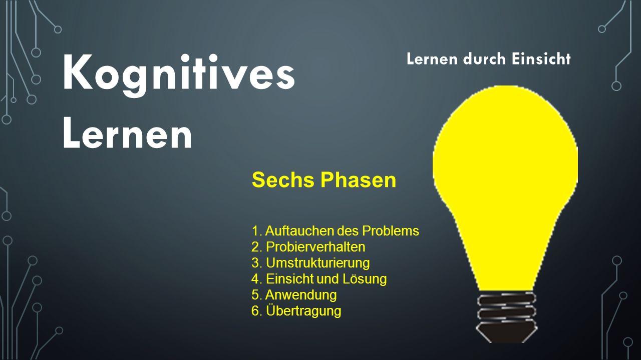 Kognitives Lernen Sechs Phasen Lernen durch Einsicht