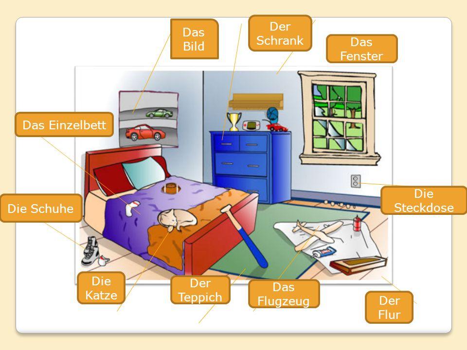Der Schrank Das Bild. Das Fenster. Das Einzelbett. Die Steckdose. Die Schuhe. Die Katze. Der Teppich.