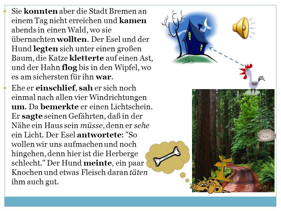Sie konnten aber die Stadt Bremen an einem Tag nicht erreichen und kamen abends in einen Wald, wo sie übernachten wollten. Der Esel und der Hund legten sich unter einen großen Baum, die Katze kletterte auf einen Ast, und der Hahn flog bis in den Wipfel, wo es am sichersten für ihn war.