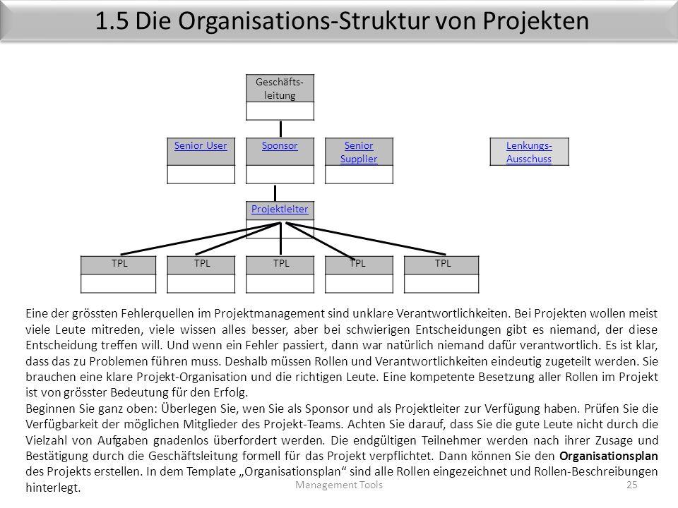 1.5 Die Organisations-Struktur von Projekten