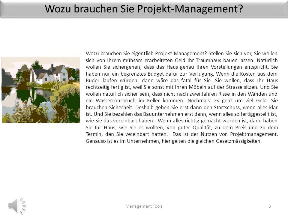 Wozu brauchen Sie Projekt-Management