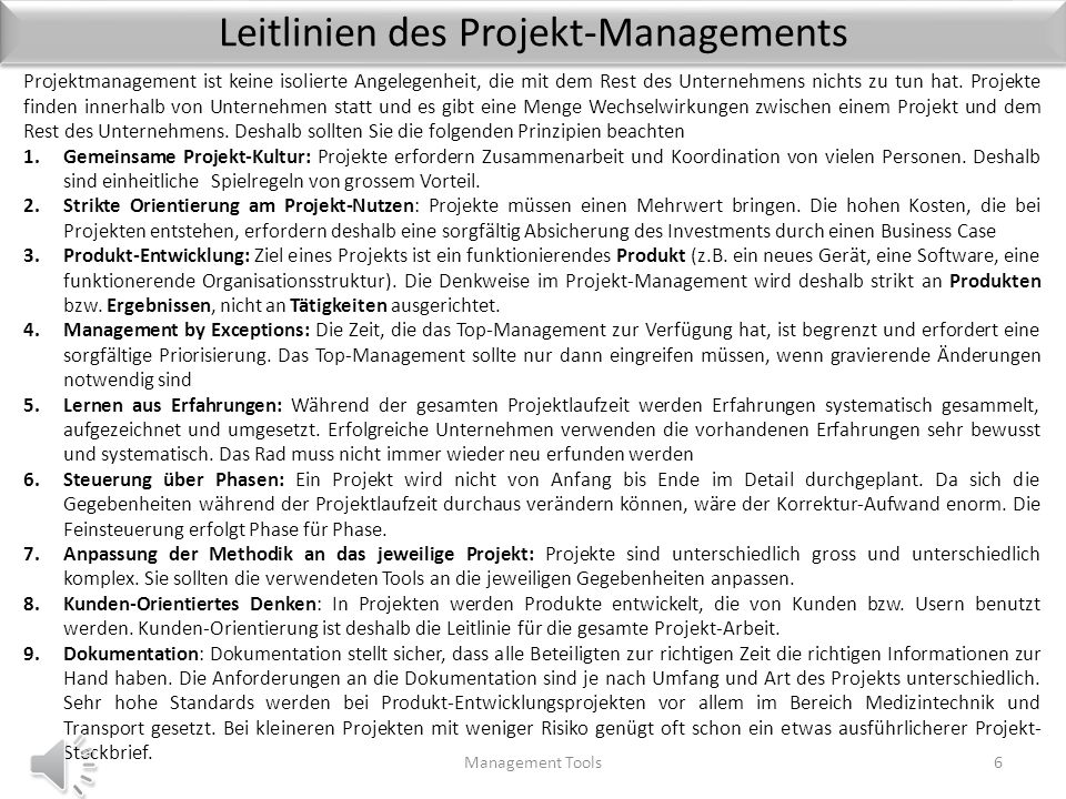 Leitlinien des Projekt-Managements