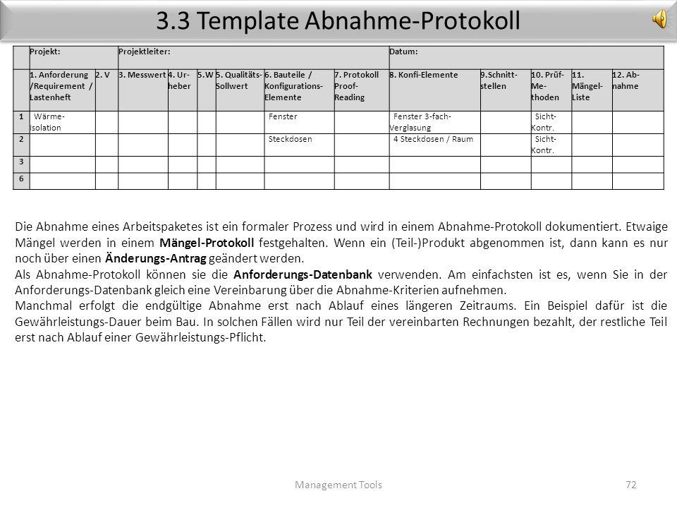 3.3 Template Abnahme-Protokoll