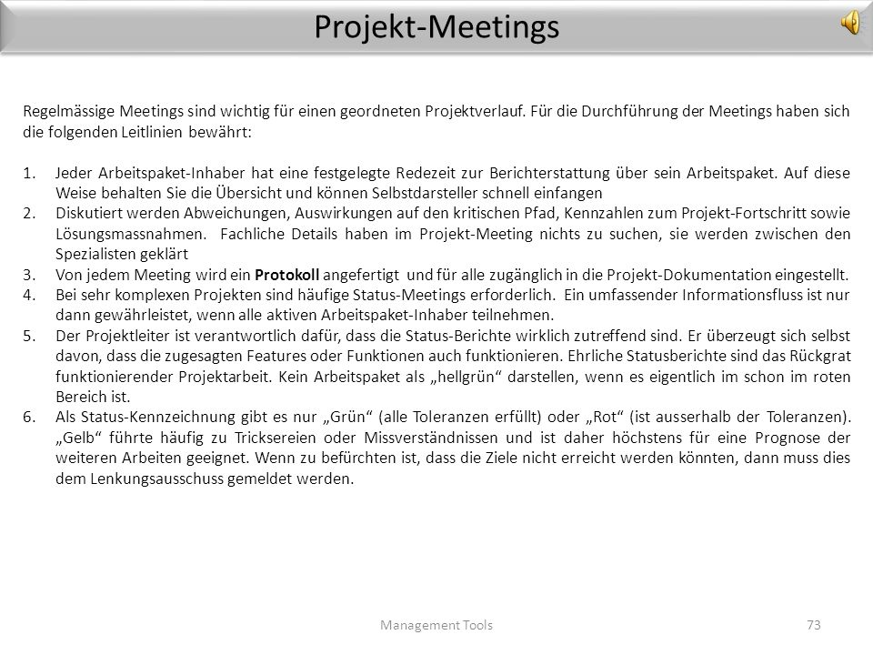 Projekt-Meetings