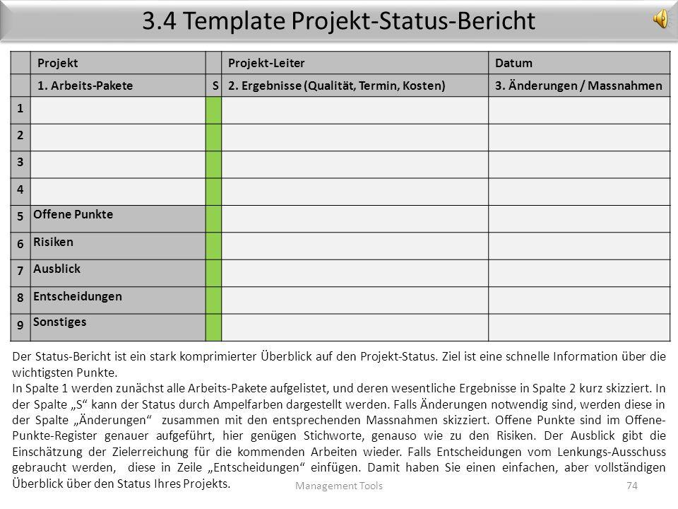 3.4 Template Projekt-Status-Bericht