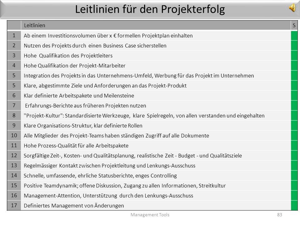 Leitlinien für den Projekterfolg