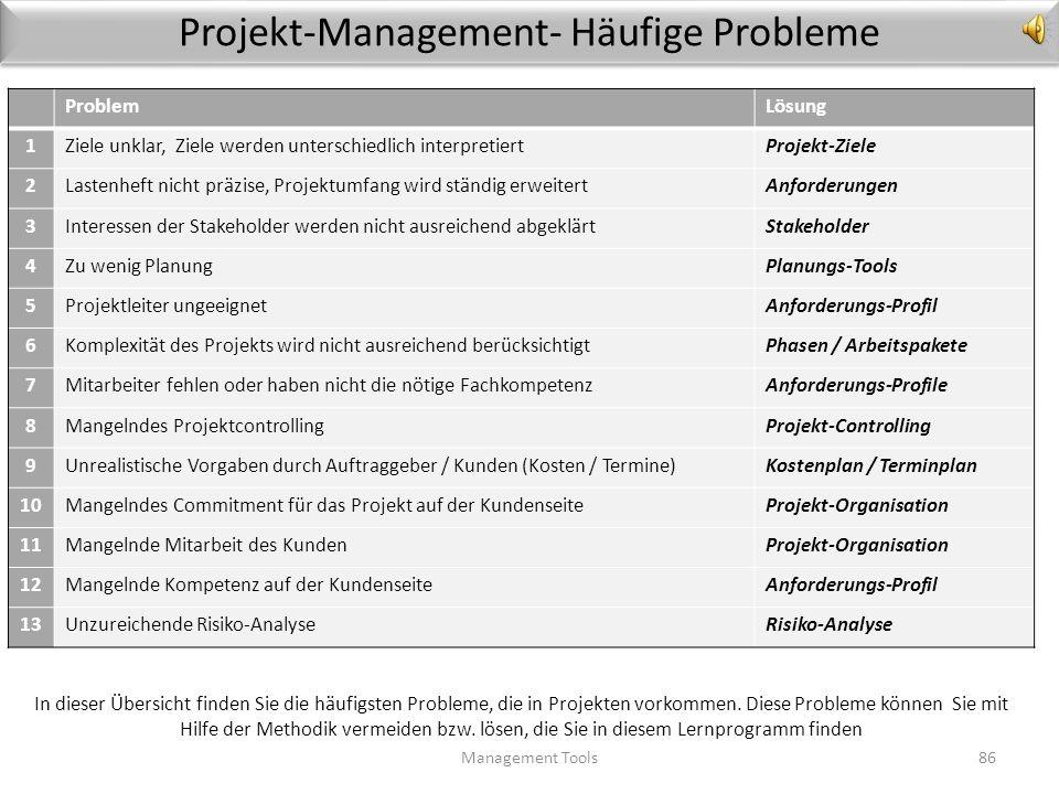 Projekt-Management- Häufige Probleme