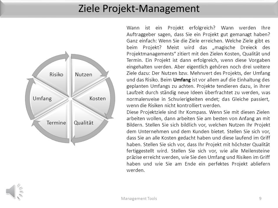 Ziele Projekt-Management