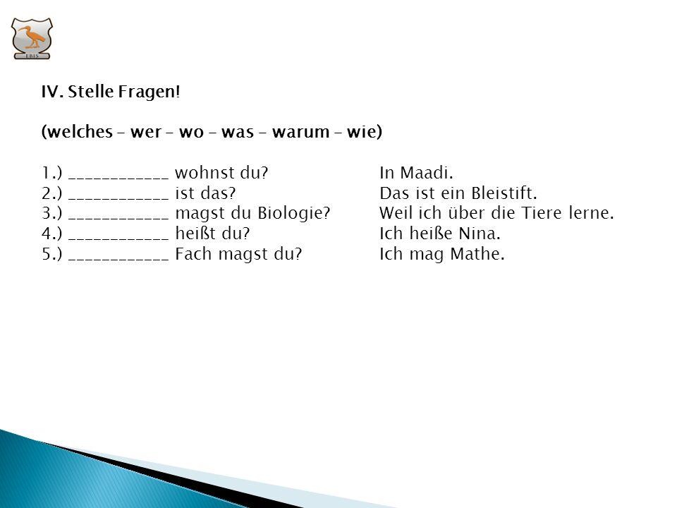IV. Stelle Fragen! (welches – wer – wo – was – warum – wie) 1.) ____________ wohnst du In Maadi.