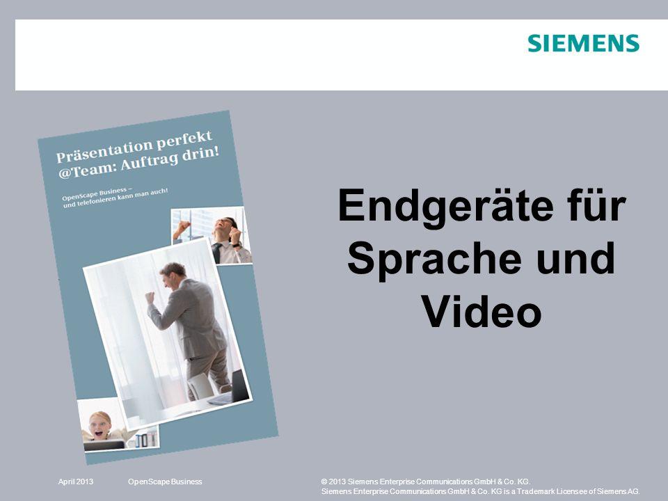 Endgeräte für Sprache und Video