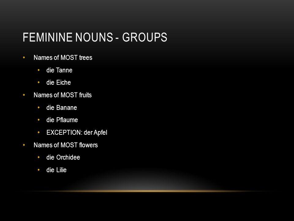Feminine nouns - groups