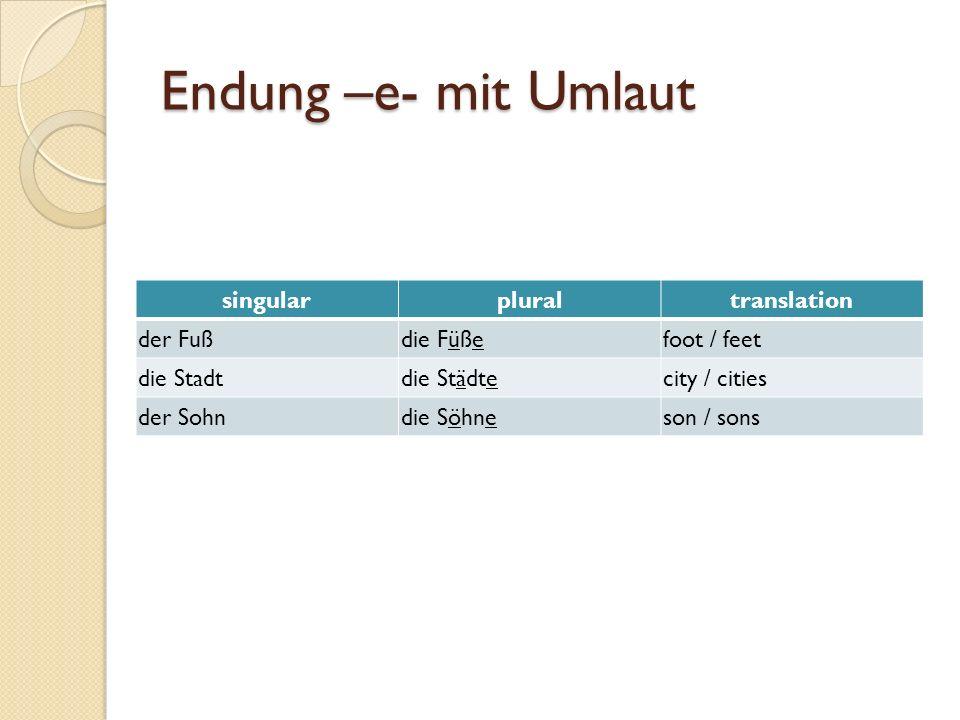 Endung –e- mit Umlaut singular plural translation der Fuß die Füße
