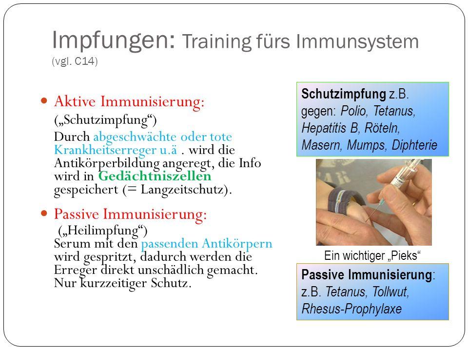 Impfungen: Training fürs Immunsystem (vgl. C14)