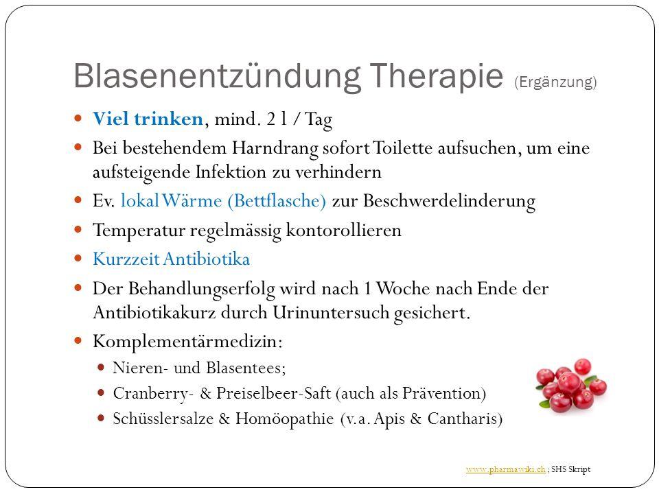 Blasenentzündung Therapie (Ergänzung)
