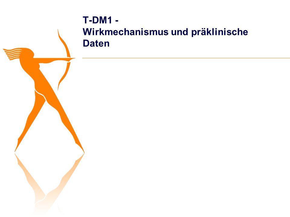 T-DM1 - Wirkmechanismus und präklinische Daten