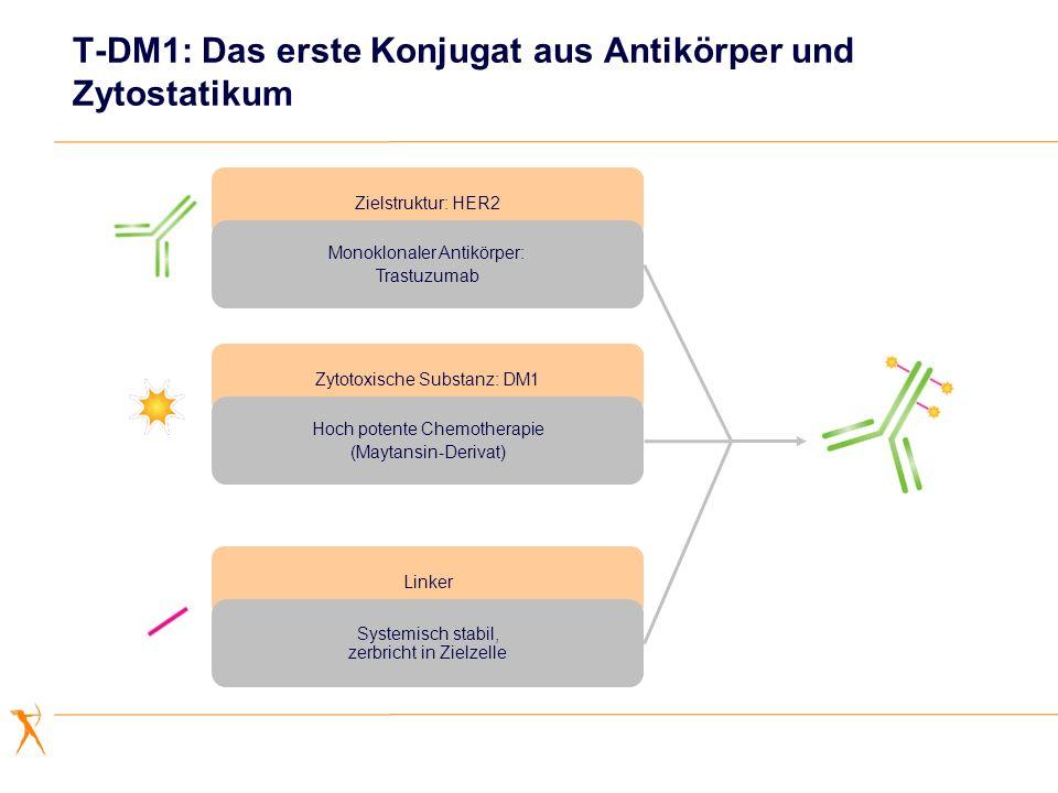 T-DM1: Das erste Konjugat aus Antikörper und Zytostatikum