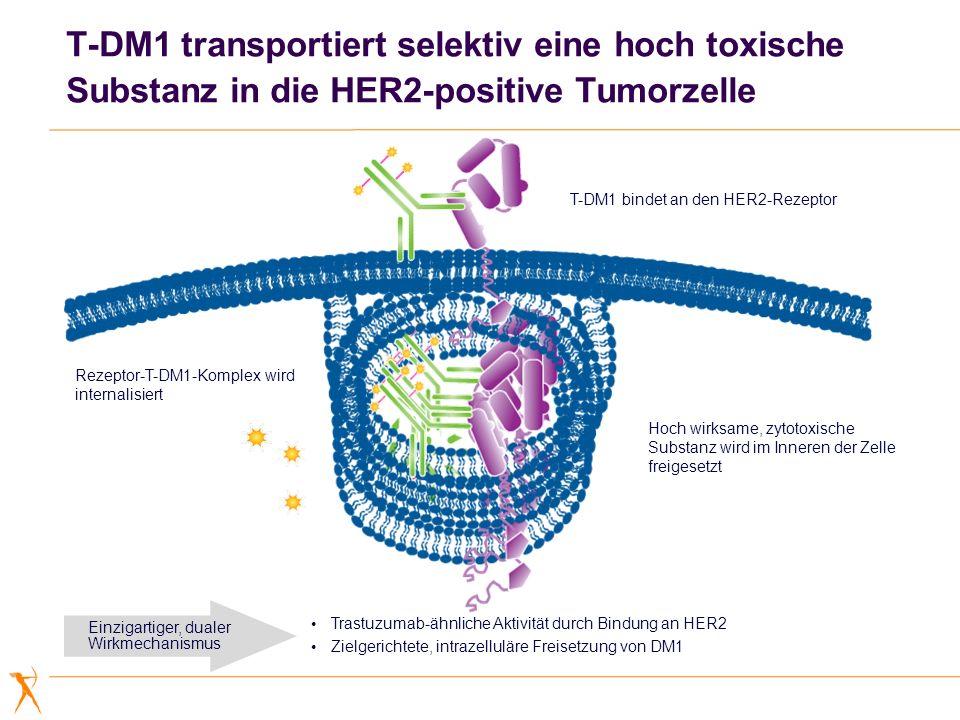 T-DM1 transportiert selektiv eine hoch toxische Substanz in die HER2-positive Tumorzelle