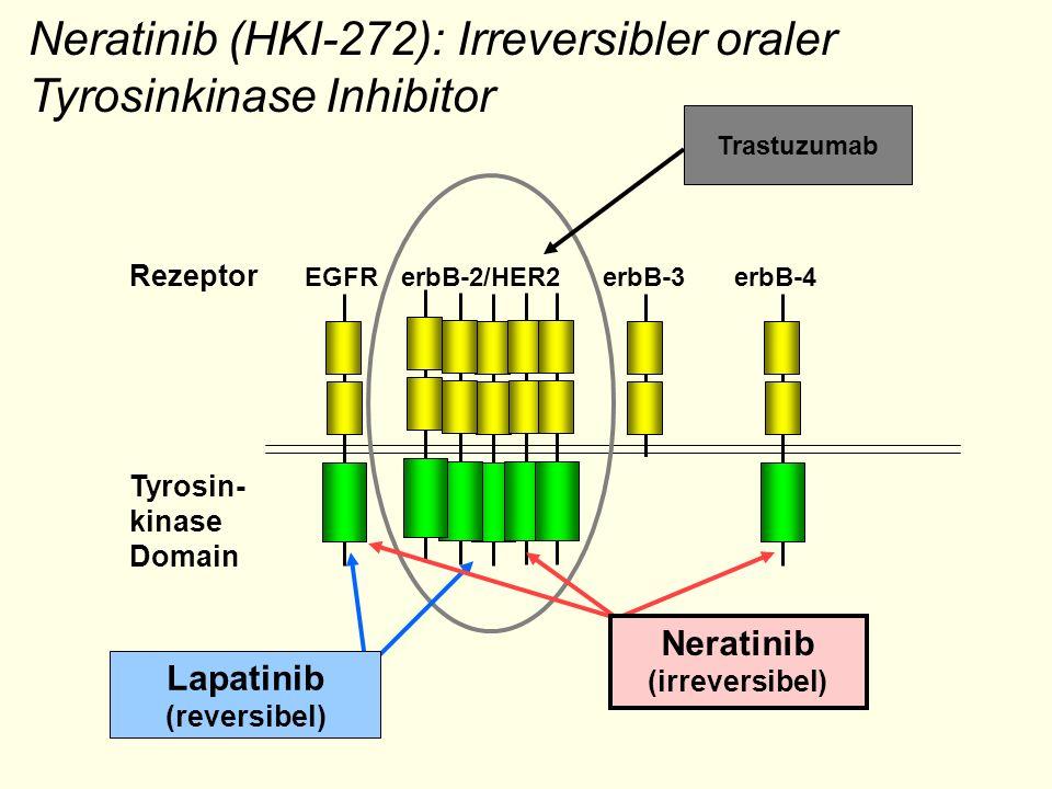 Neratinib (HKI-272): Irreversibler oraler Tyrosinkinase Inhibitor