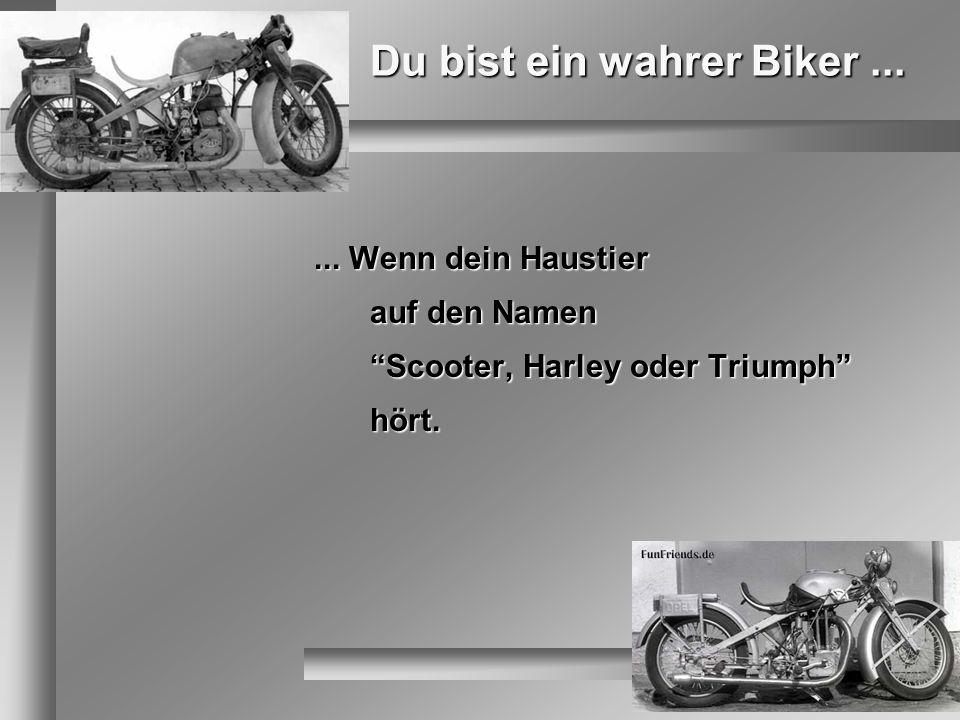 Du bist ein wahrer Biker ...