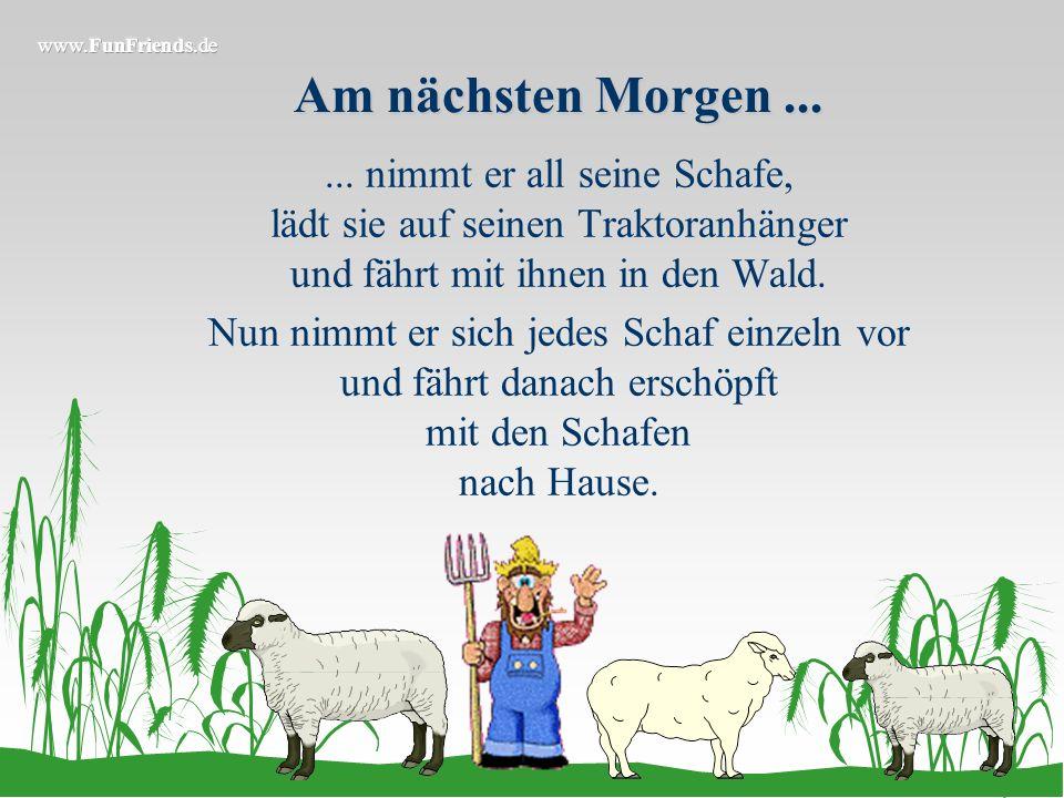 Am nächsten Morgen ... ... nimmt er all seine Schafe, lädt sie auf seinen Traktoranhänger und fährt mit ihnen in den Wald.