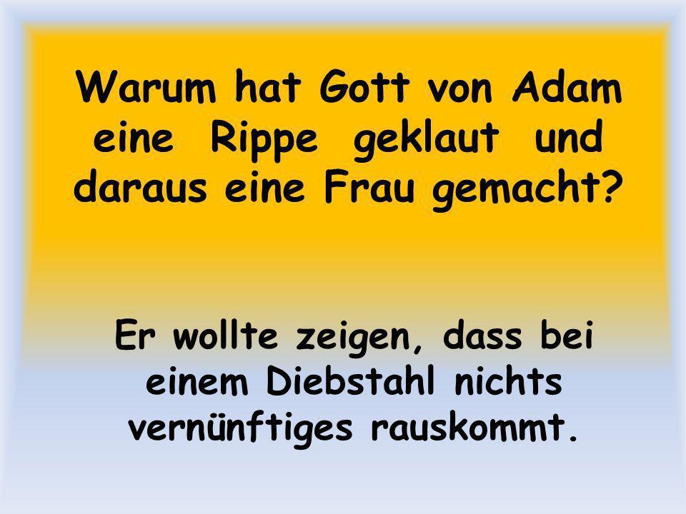 Warum hat Gott von Adam eine Rippe geklaut und daraus eine Frau gemacht