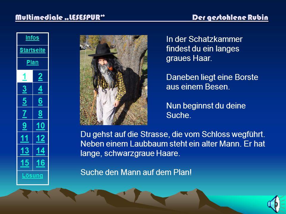 "Multimediale ""LESESPUR Der gestohlene Rubin"