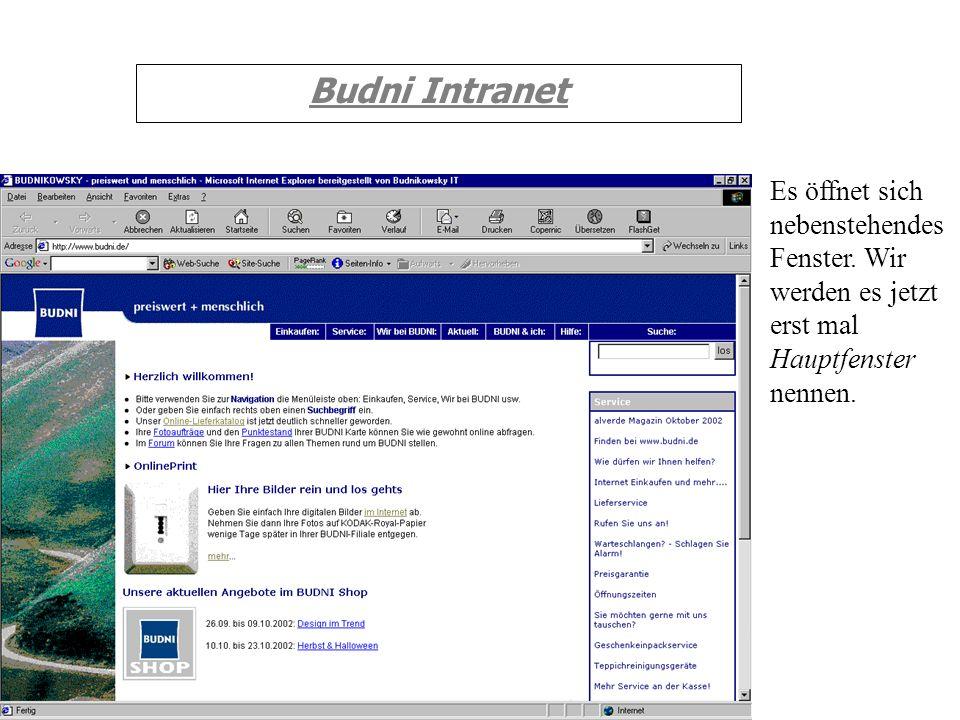 Budni IntranetEs öffnet sich nebenstehendes Fenster.