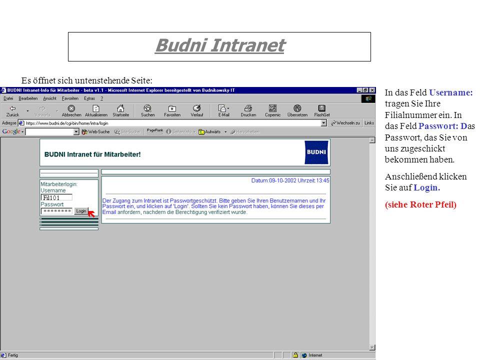 Budni Intranet Es öffnet sich untenstehende Seite: