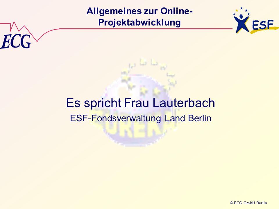 Allgemeines zur Online-Projektabwicklung