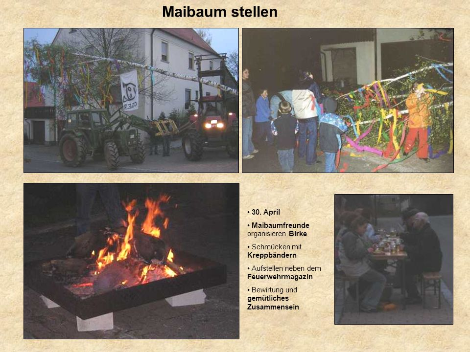 Maibaum stellen 30. April Maibaumfreunde organisieren Birke
