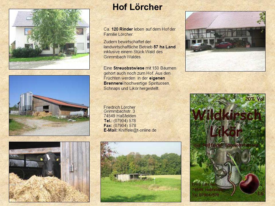 Hof Lörcher Ca. 120 Rinder leben auf dem Hof der Familie Lörcher.