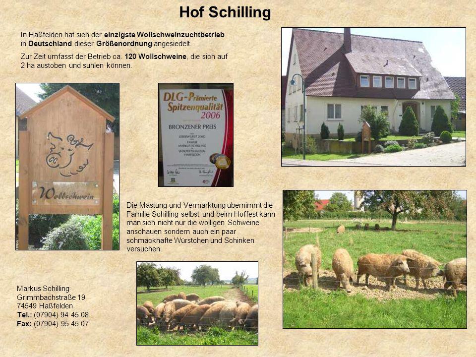 Hof Schilling In Haßfelden hat sich der einzigste Wollschweinzuchtbetrieb in Deutschland dieser Größenordnung angesiedelt.