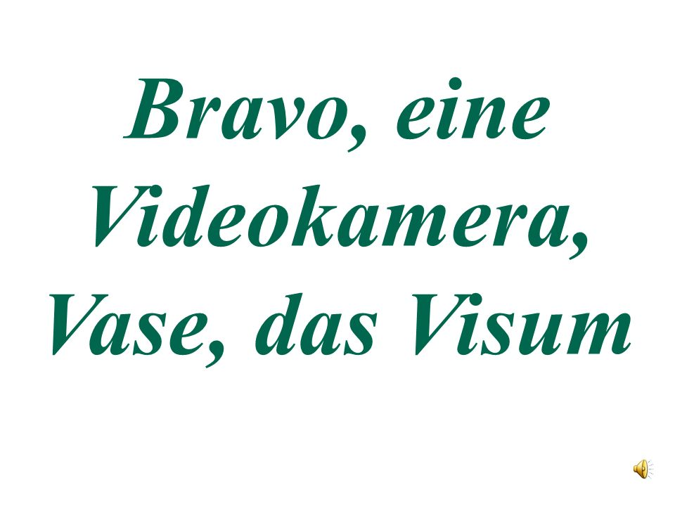 Bravo, eine Videokamera, Vase, das Visum