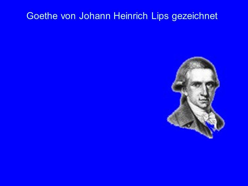Goethe von Johann Heinrich Lips gezeichnet