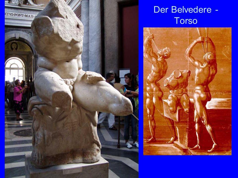 Der Belvedere - Torso